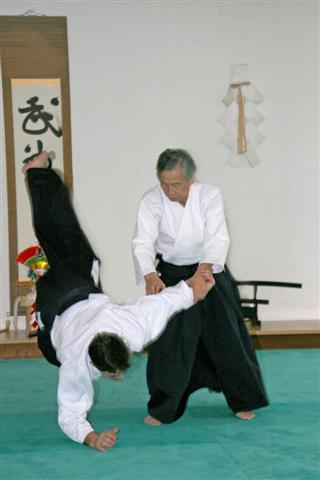 aikido_technique